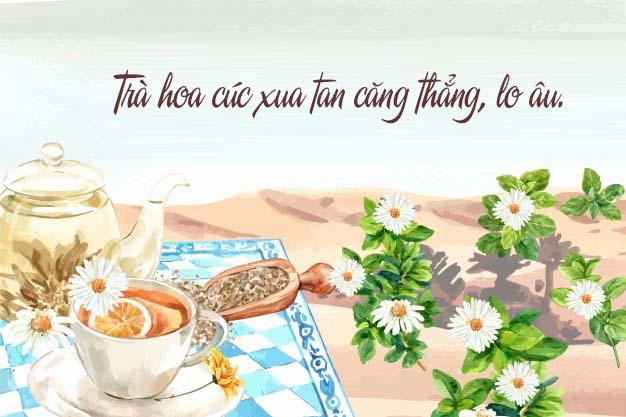3. Uống trà hoa cúc (một gợi ý rất nghiêm túc) 1