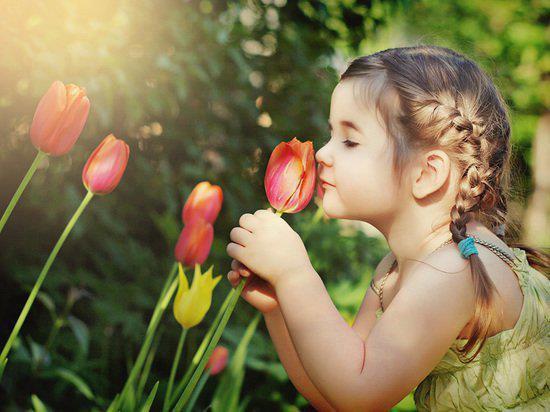 7/ Mùi hương có thể là một chất kích thích trí nhớ mạnh mẽ 1
